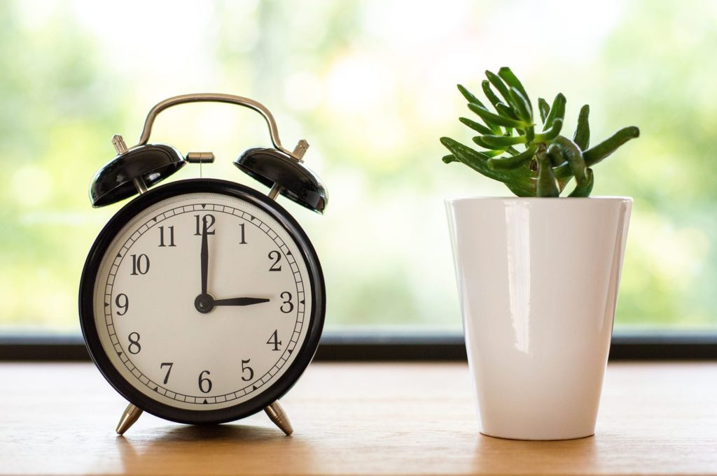 clock on table next to plant
